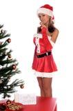 LIDSTATEN kerstman Stock Afbeelding