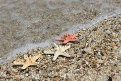 Liebe auf dem Strand Stockfotografie