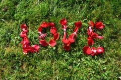 Liebe, Buchstaben von Blumenblättern Stockbild