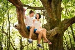 Liebe - Datum am Baum Stockfotos