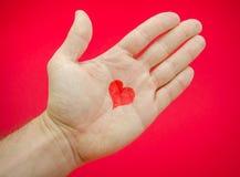 Liebe in der Palme Stockfotos