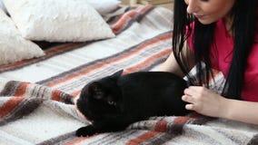 Liebe für Haustiere schöne dunkelhaarige Frau, die zu Hause ihre schwarze Katze auf dem Bett kämmt stock footage