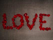 Liebe - geschrieben mit den rosafarbenen Blumenblättern Lizenzfreies Stockbild