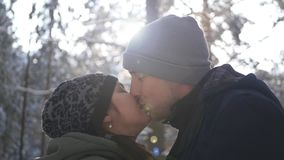 Liebe im Wald stock video footage
