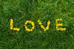 Liebe mögen eine Blume Lizenzfreie Stockbilder
