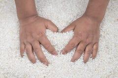 Liebe mit Reis Stockbilder
