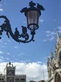 Liebe in Quadrat Sans Marco, Venedig Lizenzfreie Stockbilder