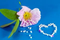 Liebe Romance Lizenzfreies Stockfoto