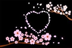 Liebe Romancekonzept Blüten der vollen Blüte Kirschund Schlag-/Fliegenblumenblätter im Herzen formen; schwarzer Hintergrund stock abbildung
