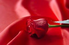 Liebe Rose auf rotem Satin Lizenzfreies Stockbild