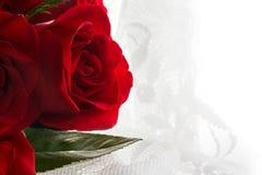 Liebe, rote Rosen und Spitze Stockbild