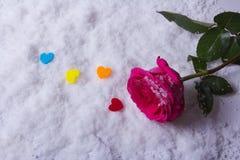Liebe St Valentinsgruß ` s Tag Schöne Innere Stockfoto
