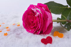 Liebe St Valentinsgruß ` s Tag Schöne Innere Stockfotografie