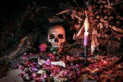 Liebe stirbt nie für Herz und Seele, Stillleben Stockfotos