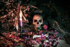 Liebe stirbt nie für Herz und Seele, Stillleben Stockbilder