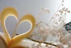 Liebe und Buch Lizenzfreie Stockbilder