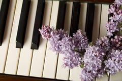 Liebe von Musik - purpurrote Flieder Stockbild
