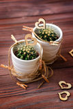 Lieben Sie Herzkakteen mit hölzernem und natürlichem Seil Stockfotografie