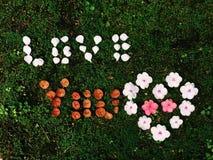 lieben Sie Sie Massage von der Blume Lizenzfreies Stockbild