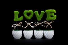 Liebes-Anlagen auf schwarzem Hintergrund Stockfoto
