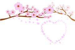 Liebes- und Hochzeitskonzepte Blüten der vollen Blüte Kirschund Schlag-/Fliegenblumenblätter im Herzen formen; lokalisiert auf we vektor abbildung