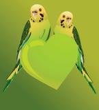 Liebes-Vögel Stockfoto