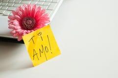 Liebesanmerkung Ti-Amo! Lizenzfreies Stockfoto