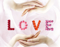 Liebeshand Stockbilder