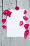 Liebeshintergrund mit Rotrose Lizenzfreie Stockfotografie