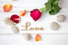 Liebeshintergrund - stiegen und Nelken Lizenzfreies Stockbild