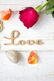 Liebeshintergrund - stiegen und Nelken Lizenzfreie Stockfotografie