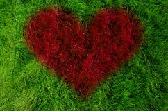 Liebeskonzept auf grünem Gras Stockfotografie