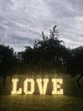 Liebesneonbuchstaben im Park Lizenzfreies Stockfoto