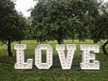 Liebesneonbuchstaben im Park Lizenzfreie Stockfotos