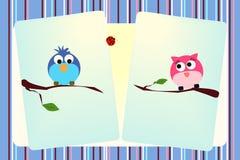 Liebesvögel Stockbild