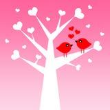 Liebesvögel Stockfotografie