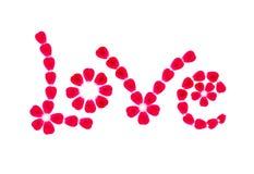 Liebeswort geschaffen von den rosafarbenen Blumenblättern Lizenzfreie Stockfotografie