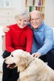 Liebevolle ältere Paare mit ihrem golden retriever Stockfotos