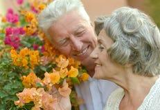 Liebevolle Ältestpaare Lizenzfreie Stockbilder