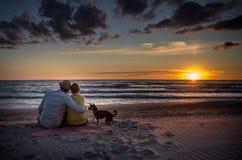 Liebevolle Familie in Sonnenuntergangmeer Stockfotos