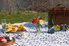 Liebevolle junge Paare, die zusammen ein romantisches Picknick im Park genießen Stockfotografie