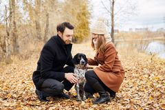 Liebevolle Paare gehen durch den Herbst Forest Park mit einem Spaniel lizenzfreie stockbilder