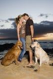 Liebevolle Paare mit Hunden am Strand Lizenzfreies Stockbild