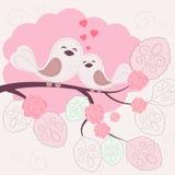 Liebevolle Vögel Stockfotos