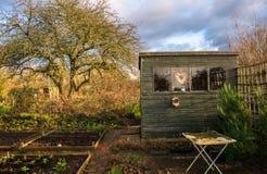 Liebevoller Gemüsegarten der Zuteilung Lizenzfreies Stockfoto