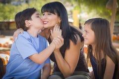 Liebevolles Mischrasse-Familien-Porträt am Kürbis-Flecken Stockfotos