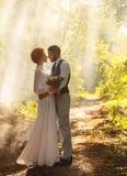 Liebhaber im Park, heiratend Lizenzfreies Stockfoto