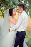 Liebhaber im Park, heiratend Stockfotos