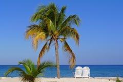 Liebhaber setzen in Jamaika Lizenzfreies Stockbild