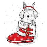 Liebres lindas en botas y auriculares del invierno Fotografía de archivo libre de regalías